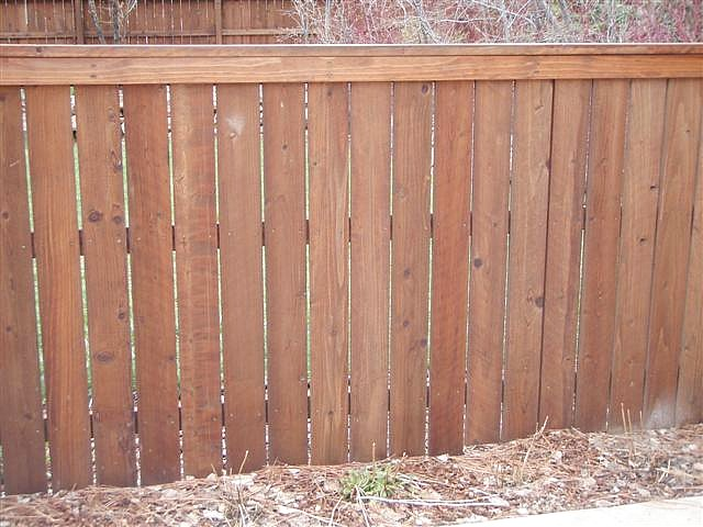 5ft-privacy-fence-with-cap-n-trim