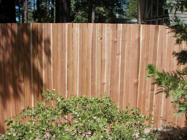 Landscaping Photo Gallery Privacy